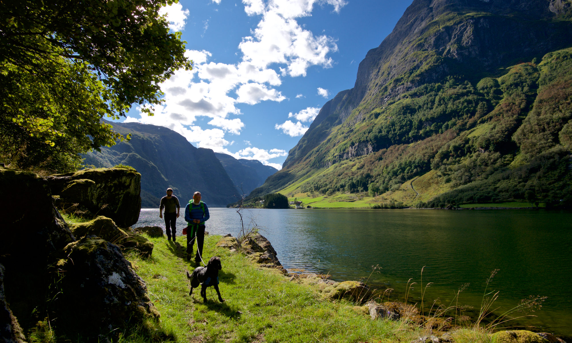 Walking along the Nærøyfjord