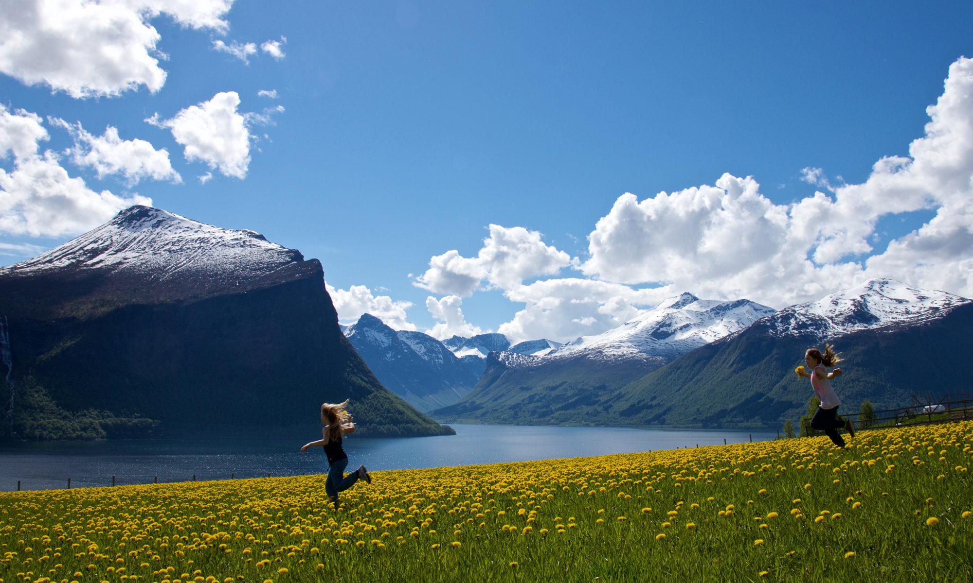 Fjordguide