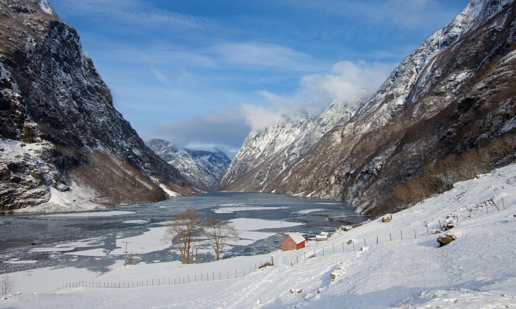 Frozen Fjords