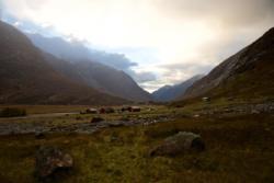 Nyestølen Mountain Pasture