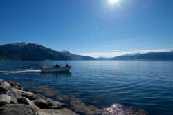 From Balestrand towards the inner part of the Sognefjord