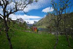 From Balestrand