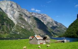Holmo by the Nærøyfjord.