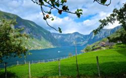 From Otternes Farmyard by the Aurlandsfjord.