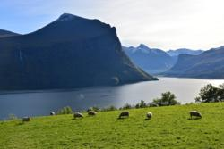 Klungnes by the Romsdalsfjord.
