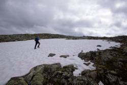 Hike to Mt Bøttejuvet, on the mountain plateou.