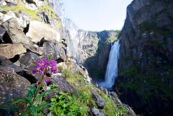 Vøringsfossen in Eidfjord
