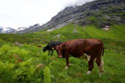 Norangsdalen Valley