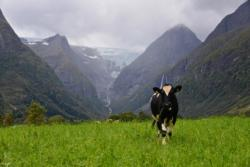 The Oldedalen Valley. Olden in Nordfjord, Norway. Photo: www.fjords.com