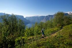 From the hike to Hovdungo in Aurland.