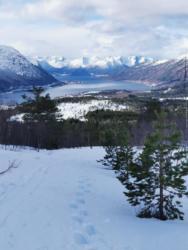 Skiing to Kavliheian and Vårseterhjelen, 08 MAR 2020. Photo: Odd Hatlen