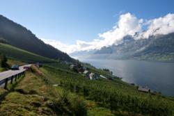Sørfjorden, a branch of the Hardangerfjord.