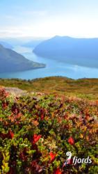 034 iphoneMt. Molden above the Lustrafjord. Sogn og Fjordane, Norway.