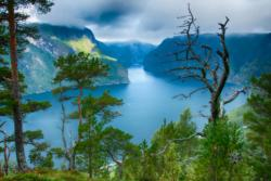 The Aurlandsfjord seen from the hill behind Stegastein Lookout. National Tourist Route Aurlandsfjellet in Sogn og Fjordane, Norway.