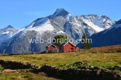 Kavliheian Mountain Pasture