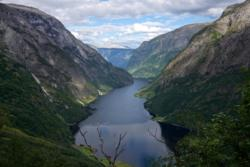 From the upper part of the Rimstigen Trail. View towards the Nærøyfjord.