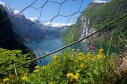 The Geirangerfjord and the Seven Sisters Waterfall seen from the trail between Skageholo and Skageflå.