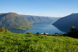 View from Mollandsmarki towards the outer part of the Lustrafjord