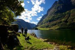 Hiking along the Nærøyfjord